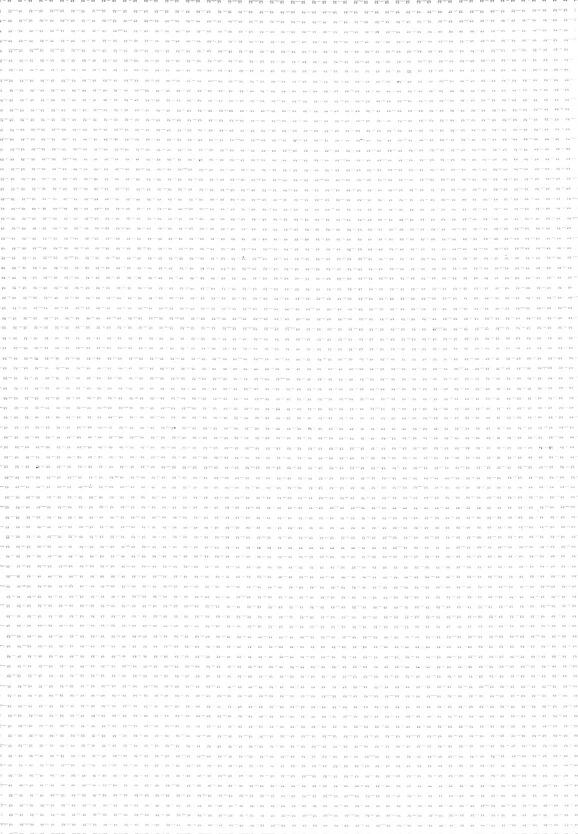 White Roller Shades 10%